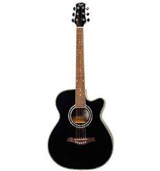 Flight F-230 BLK akustična gitara paket