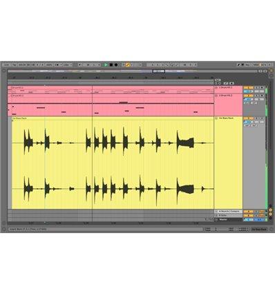 Ableton Suite 10 upgrade sa Live Standard