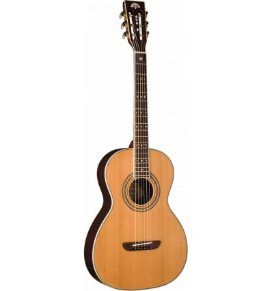 Washburn WP26SE Natural Satin elektro-akustična gitara